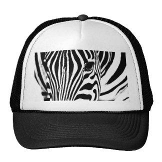Zebra portrait black and white trucker hat