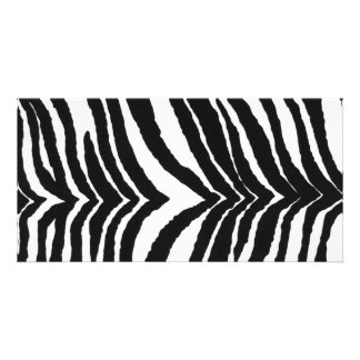 Zebra Print Photo Cards