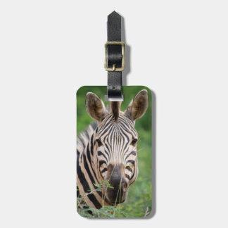 Zebra profile luggage tag