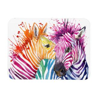 Zebra Rainbow Flexi Magnet
