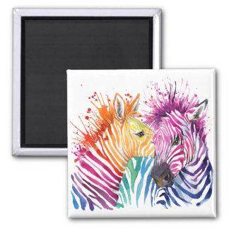 Zebra Rainbow Magnet
