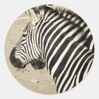 Zebra Round Sticker