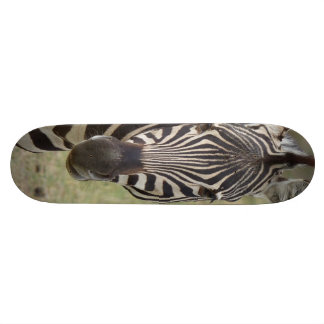 zebra skate board decks
