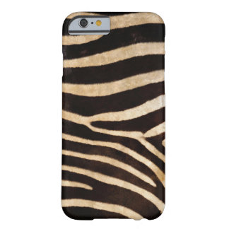 Zebra Skin Animal Print in Black and Natural Barely There iPhone 6 Case