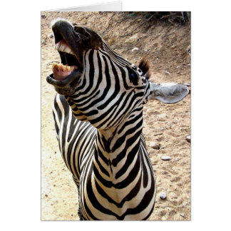 Zebra Smile Notecard