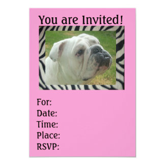 Zebra Stripe English Bulldog party Invitations