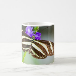 Zebra Striped Butterfly Coffee Mug