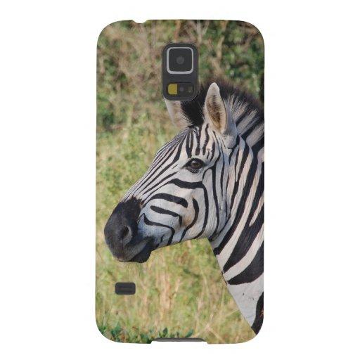Zebra Stripes Animal African Safari Destiny Samsung Galaxy Nexus Cases