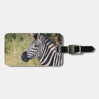 Zebra Stripes Animal African Safari Destiny Luggage Tag