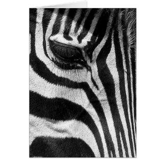 Zebra Stripes Card