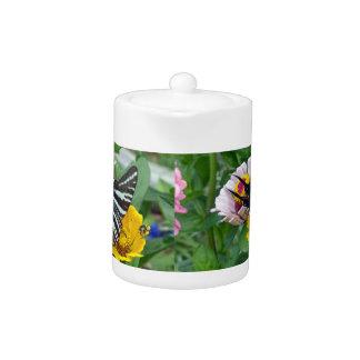 Zebra Swallowtail+Japanese Beetle