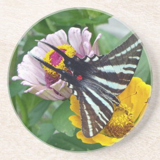 Zebra Swallowtail+Japanese Beetle Beverage Coaster