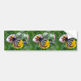 Zebra Swallowtail+Japanese Beetle Bumper Sticker