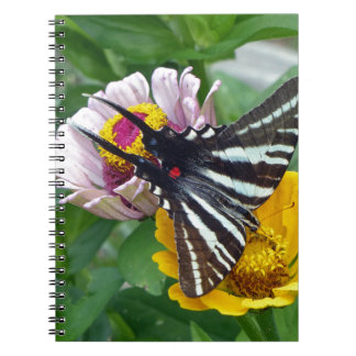 Zebra Swallowtail+Japanese Beetle Notebook