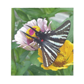 Zebra Swallowtail+Japanese Beetle Notepads