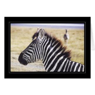 Zebra Up Close Card