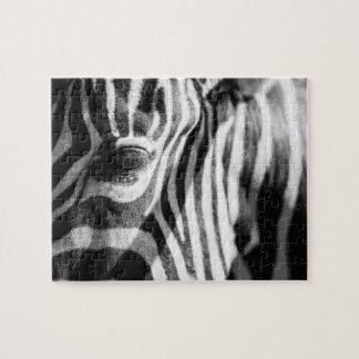 Zebra Up Close Jigsaw Puzzle