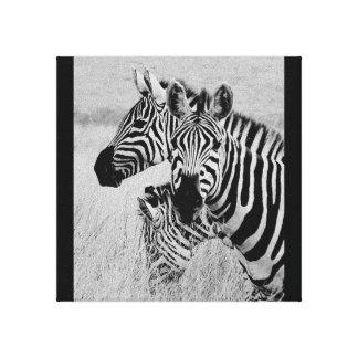 Zebra wild animals Africa series Canvas Print