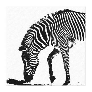 Zebra with Shadow Canvas Print