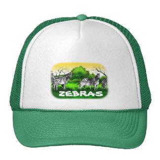 Zebras Alert Hats