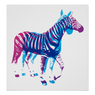 Zebras - Blue & Purple Poster