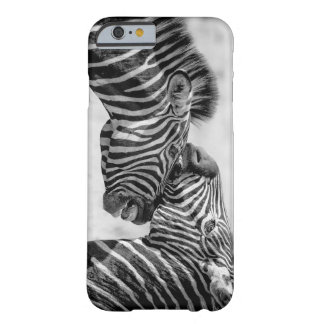Zebras by storeman barely there iPhone 6 case