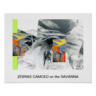 ZEBRAS CAMOED on the SAVANNA by CR SINCLAIR Poster