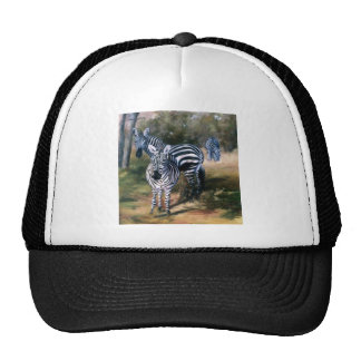 Zebras hat