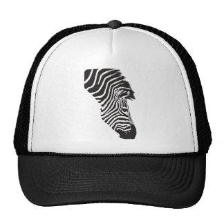 Zebras Hats