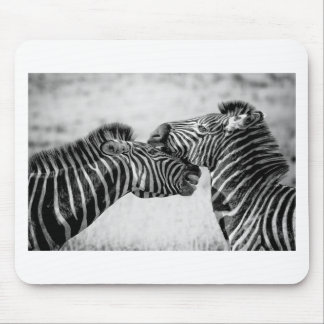 Zebras In Africa Mouse Pad