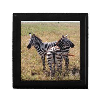 Zebras in Nairobi Kenya Trinket Boxes