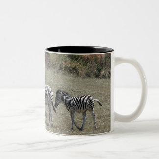 Zebras on the Move Mug