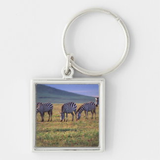 Zebras on the Serengetti Plains at Sunrise, Silver-Colored Square Keychain