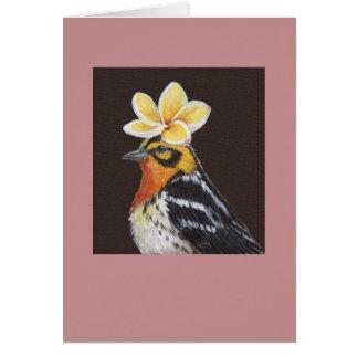 Zed the blackburnian warbler card