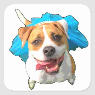 Zelda the Bulldog Square Sticker