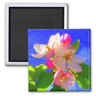 Zen Blossoms Magnet
