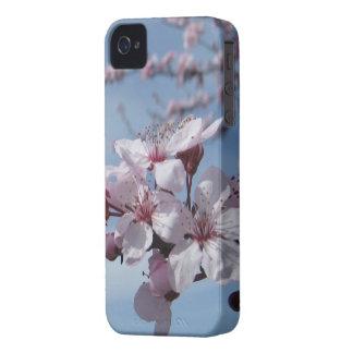 Zen-  Cherry Blossom iPhone4S Case
