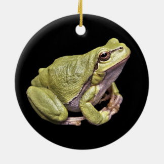 Zen Frog Pale Green Treefrog Black Ornament