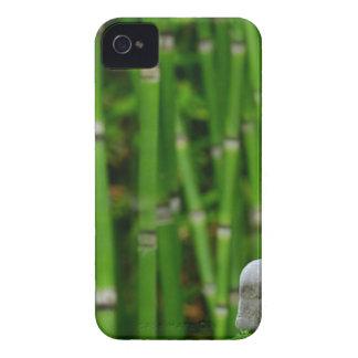 Zen Garden Meditation Monk Stones Bamboo Rest iPhone 4 Case-Mate Case