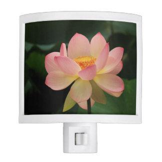 Zen Garden Peaceful Soft Pink Lotus Floral Night Lite