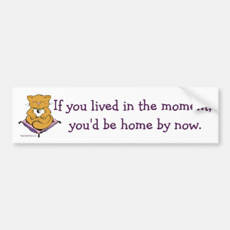 Zen Kitty Cat Live In The Moment Meditation Bumper Sticker