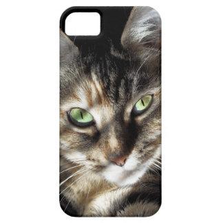 Zen Kitty iPhone 5 Cover
