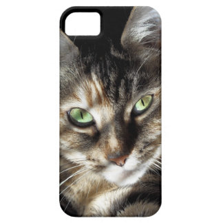 Zen Kitty iPhone 5 Covers