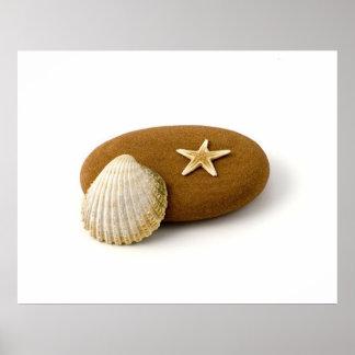 Zen Nature Sea Shell Star fish Pebble Poster