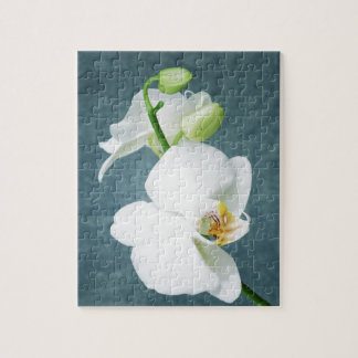 Zen White Orchid Flower Jigsaw Puzzle
