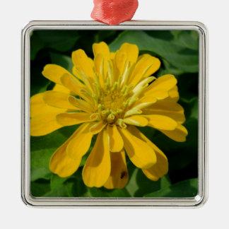 Zesty Zinnia Silver-Colored Square Ornament