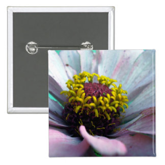 Zinnia Bloom Inside Pastel Pink 2 Inch Square Button