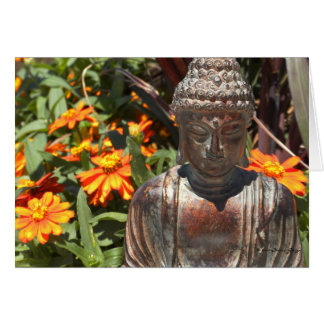 Zinnia Buddha Card