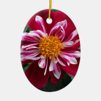 Zinnia Ceramic Oval Ornament