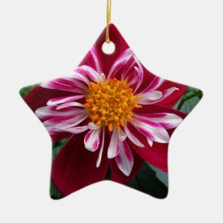 Zinnia Ceramic Star Ornament